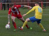 Ryhope CW 1-1 Stockton Town FC: Ryhope Colliery welfare rescue late draw against Stockton